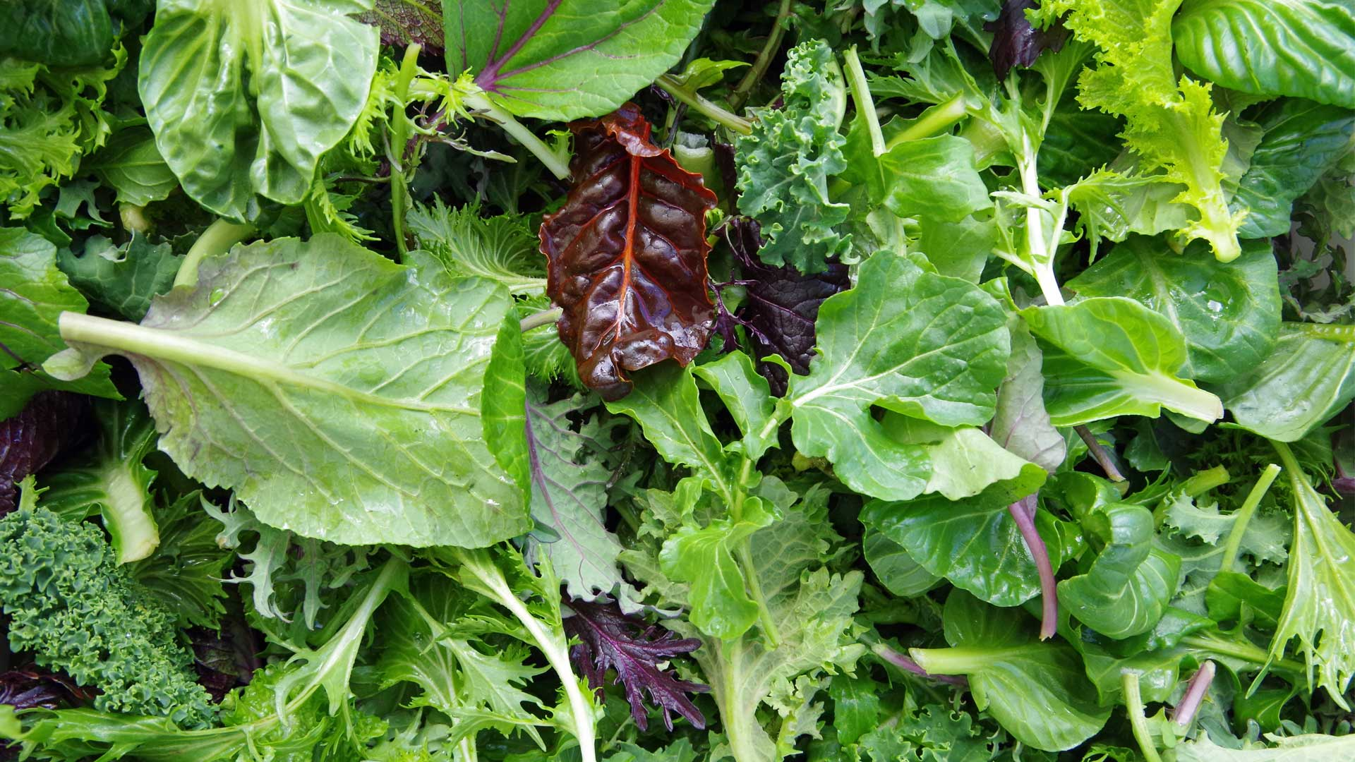 Leafy Greens to fight CollagenDeficiency for hair loss